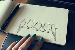 birds.Inspiration, Teal Nails, Artsy, Art Journals, Illustration, Sketches, Birds, Drawing, Blue Nails