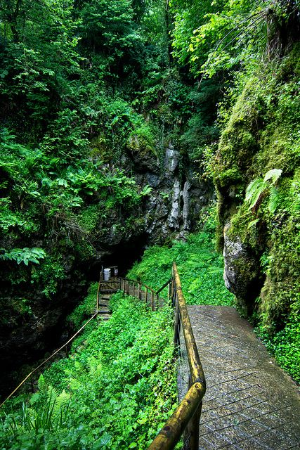 Entrance to Marble Arch Caves  Northern Ireland's longest known cave system. A must see on the next Ireland adventure.