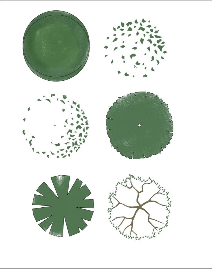 Summer Trees in Plan - Free Download from First In Architecture