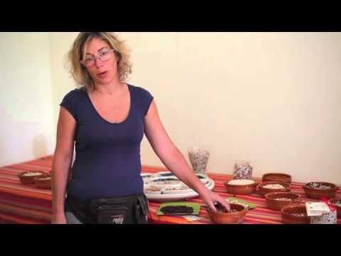 la produzione alba dei fagioli di Sarconi e comune nel cuore della Lucania, piccolo caratterizzato con qualità molto elevata.