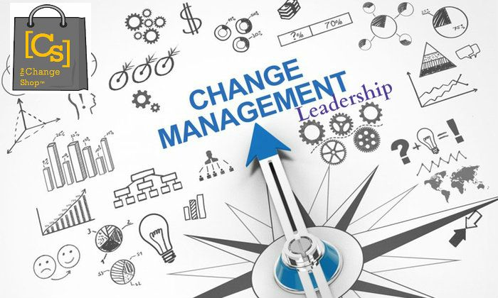 If You Want To Manage Your Business In The Perfect Way By Which Your Organization Can Able To Comple Digital Transformation Change Management Management Skills