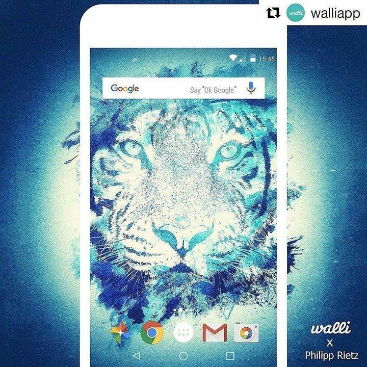 "RepostBy @badbugs_art: ""#Repost @walliapp  The new illustration of the day is shared by Philipp Rietz (@badbugs_art) a young digital artist who has an awesome collection of illustration on Walli App! #watercolor #tiger #germanartist #illustration #digitalart #artwork #fancystuff #wallpaper #wallpaperlove #watercolortattoo #funnyasfuck #fancystuff #animalsofinstagram - http://ift.tt/1Ogt3bY #art #design"