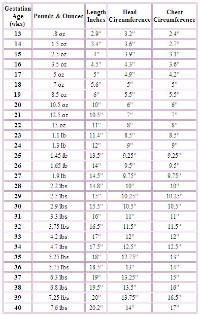 Best 25+ Baby growth charts ideas on Pinterest | Infant milestones ...