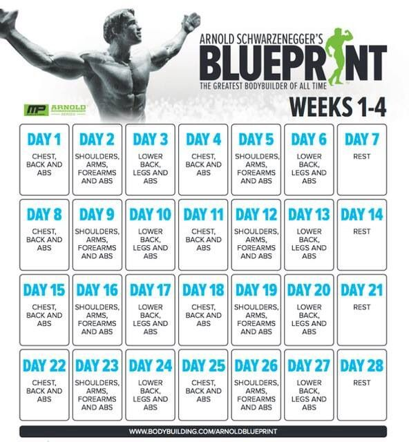 Arnold Blueprint - my workout plan for the next 8 weeks!!! killer