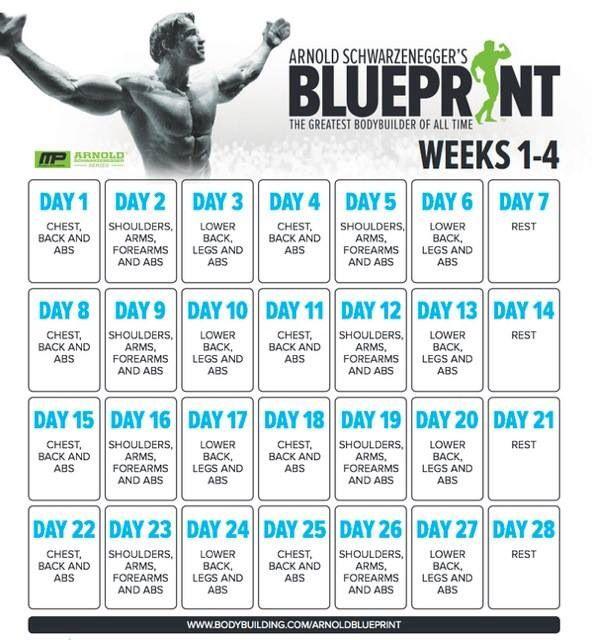 25+ best ideas about Arnold Workout Plan on Pinterest
