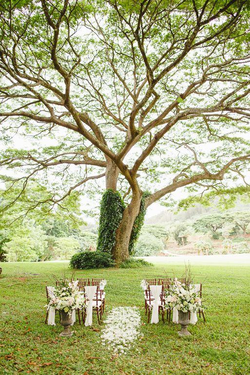 National Tropical Botanical Gardens in Lawai wedding ceremony location on the south shore of Kauai. Under a large tree in Big Valley ceremony site at NTBG.