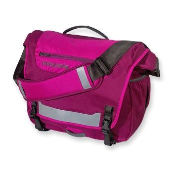 Patagonia laptop/work bag. My hubby recently surprised me with this. I was in desperate need for a new work bag...this one is perfect, and I love the pink! :-)