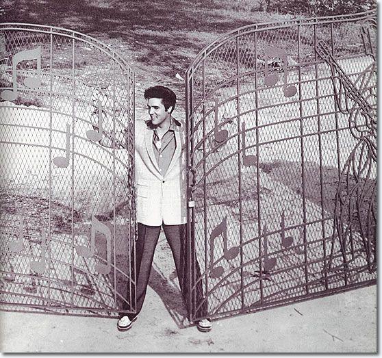Graceland | Bluedragonfly10                                                                                                                                                      More