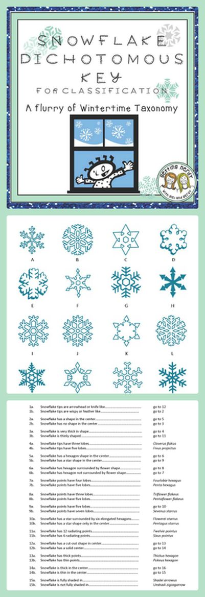 74 best bio class images on pinterest life science teaching winter dichotomous key practice identify snowflakes for holiday fun in life science and biology great for your classification unit fandeluxe Choice Image