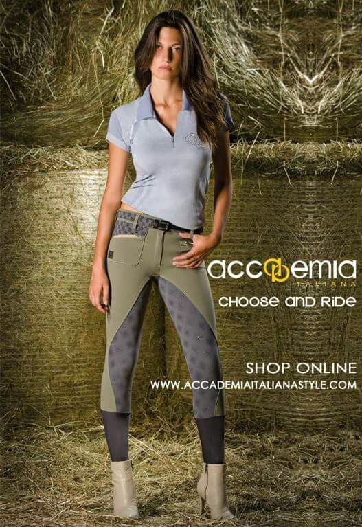 75 Best Images About Breeches Schooling On Pinterest