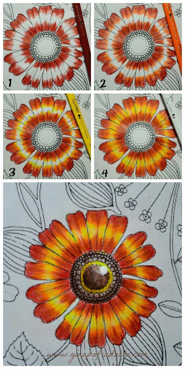 #inspiringcoloringpages #coloringbooks #páginasparacolorir #secretgarden #jardimsecreto #livrosdecolorir #florestaencantada #enchantedforest #johannabasford #adultcoloring #ginapafiadache