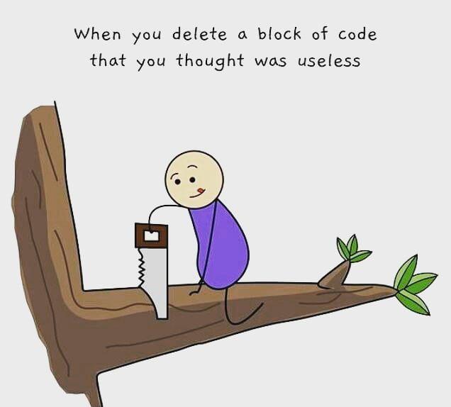 That Useless Block Of Code Programmer Jokes Programming Humor Computer Humor