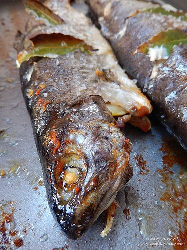 Pastrav cu dafin verde la cuptor.   Roasted trout stuffed with fresh bay leaves.