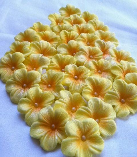 Pezzo di torta decorazioni luce gialla Gum pasta di SweetEdibles, $12.50