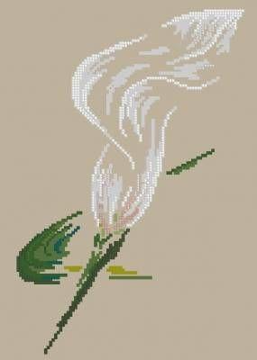 Калла - Цветы, натюрморты с цветами - Схемы вышивки - Иголка