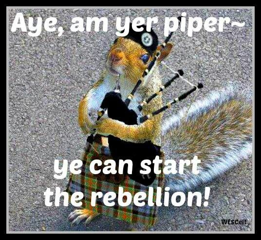 17 Best Images About Fat Bastard Pipes On Pinterest: 17 Best Images About Kilts And Pipes On Pinterest