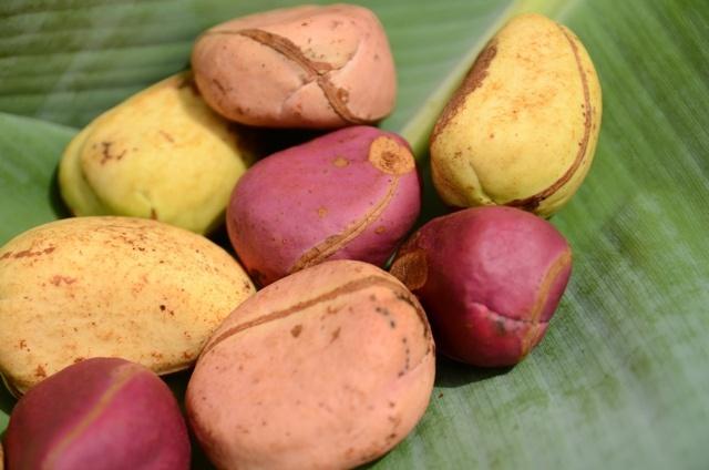 Cola nuts, Guinea Conakry. Photo: C.Ladavicius, via Flickr
