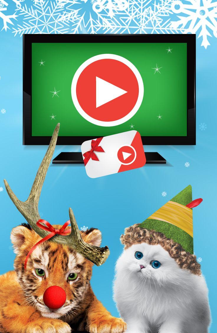 Courez la chance de GAGNER 1 des 5 téléviseurs intelligents de 48 po ou 1 des 10 cartes-cadeaux de 60 $ | Concours Classiques des Fêtes de ROYALE