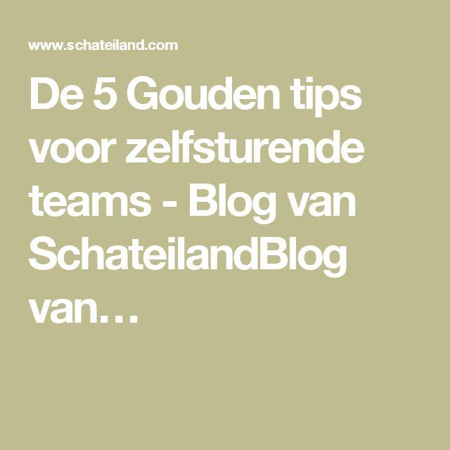 De 5 Gouden tips voor zelfsturende teams - Blog van SchateilandBlog van…