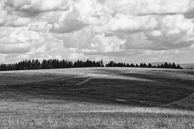 bwstock.photography - photo | free download black and white photos  //  #summer #mountain #meadow #landscape
