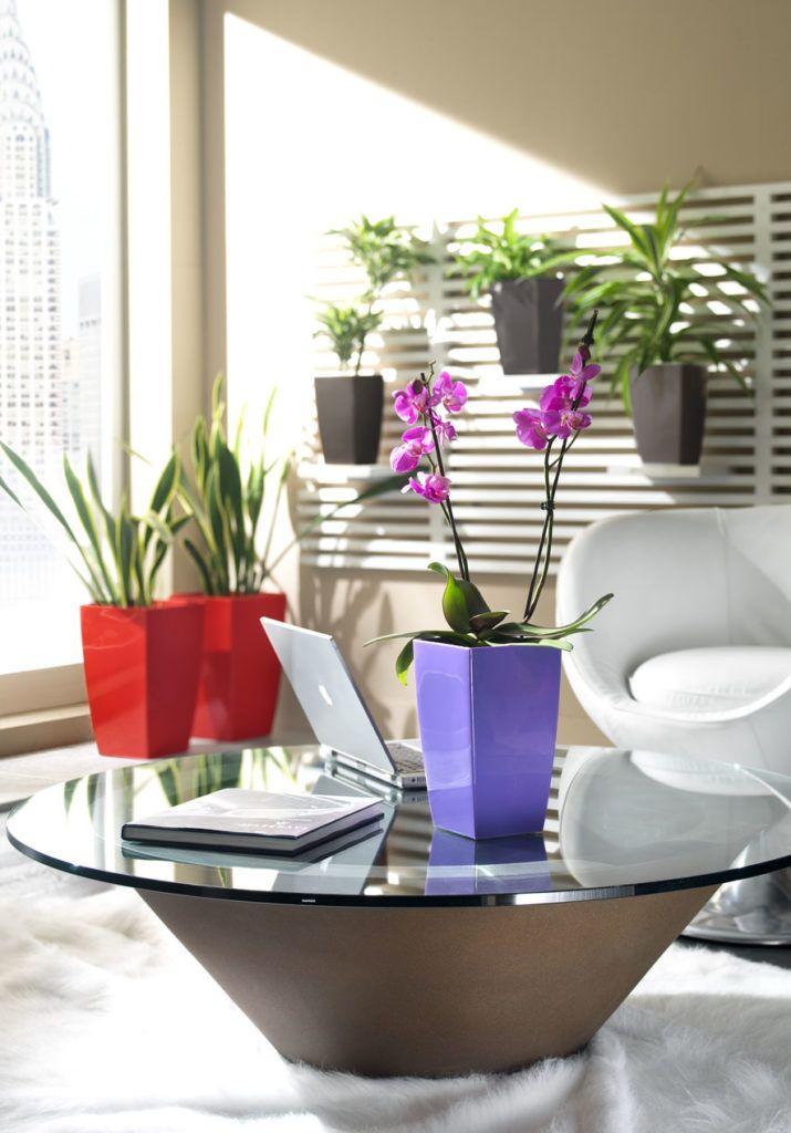 Zdrowe powietrze dzięki roślinom | Inspirowani Naturą I flower pots teraplast design makeithome.pl