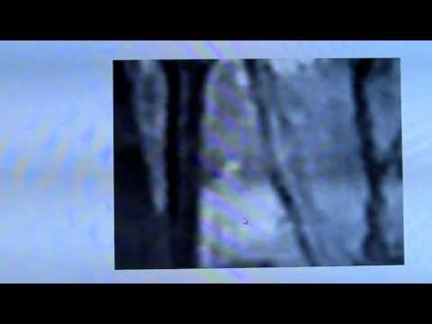 M.K.Davis discusses white Bigfoot video.mp4