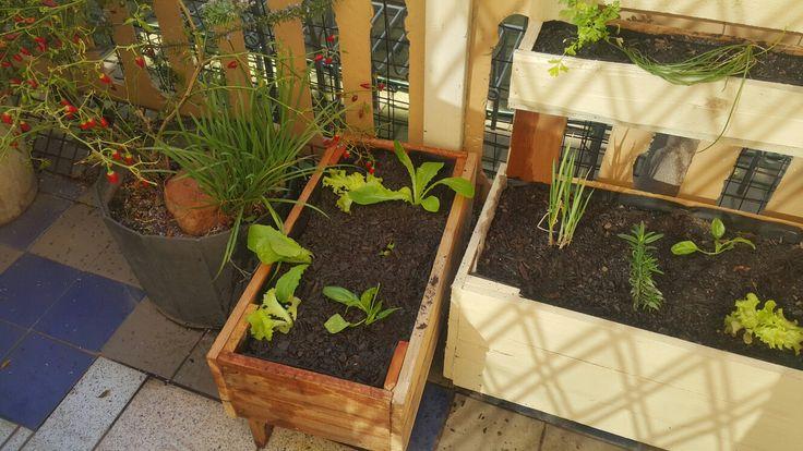 Medium size recycled pallet planter