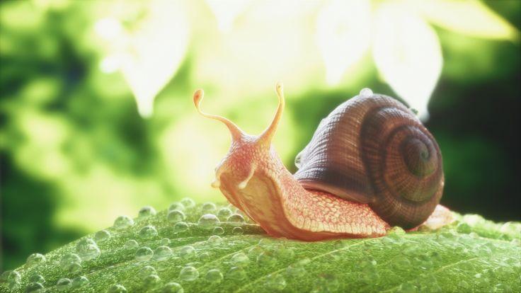 ArtStation - Snail, Sedat Açıklar