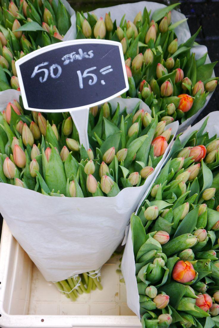 Tulpen. Amsterdam... Blumenmarkt