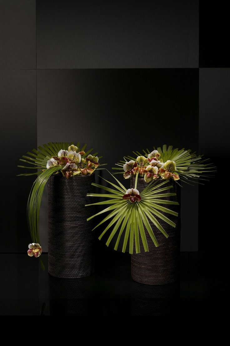 Phapiopedilum orchid, chamaerops leaves and steelgrass on rattan vases - Decor…