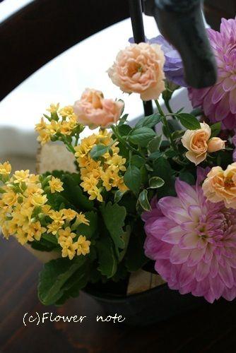 『【今日の贈花】お誕生日には育てる楽しみも!』http://ameblo.jp/flower-note/entry-11620450683.html