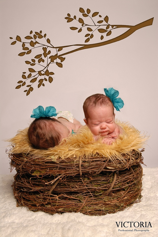 Twin Sisters. Baby Photography