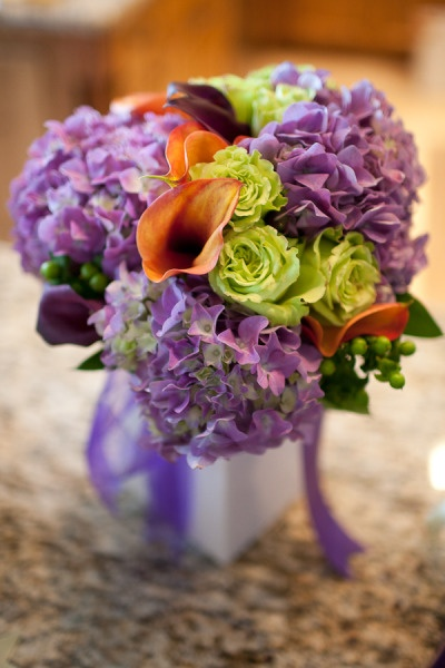 purple hydrangea, chartreuse roses