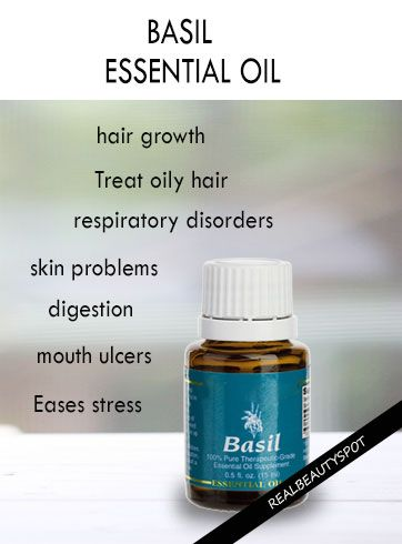 BENEFITS AND USES OF BASIL ESSENTIAL OIL