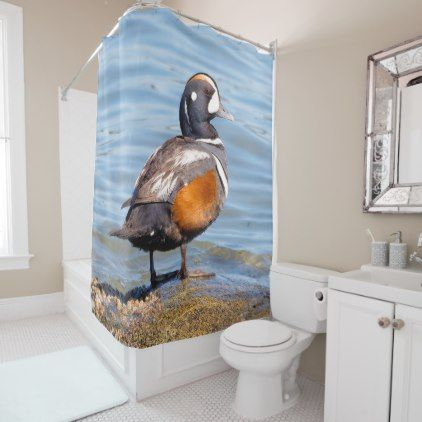 Beautiful Harlequin Duck on the Rock Shower Curtain - beauty gifts stylish beautiful cool