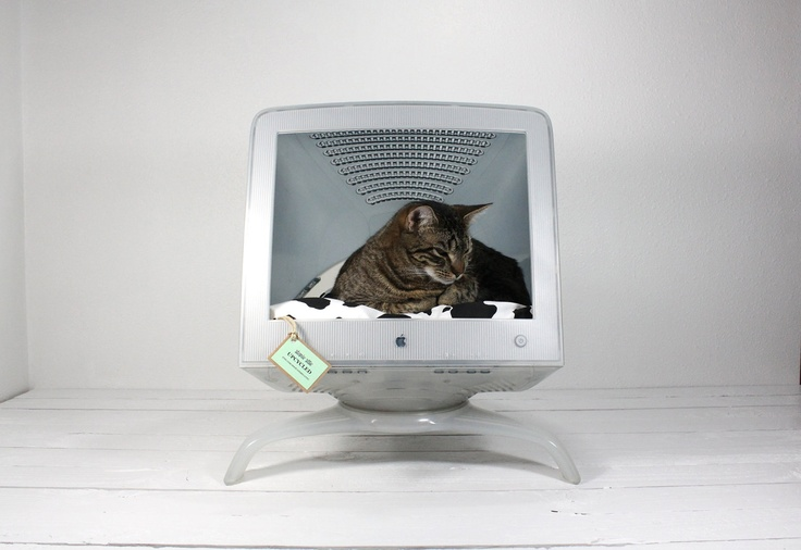 cat bed created from an old mac computer