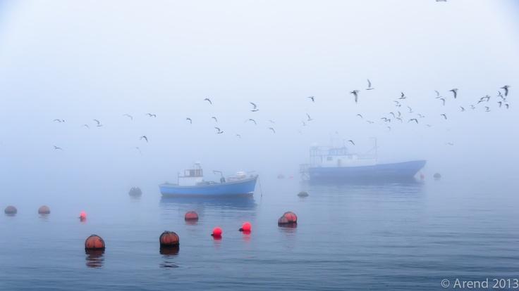 Misty Hermanus Harbour