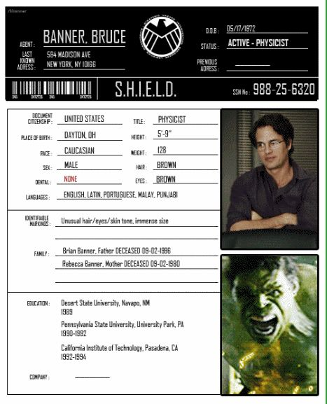 S.H.I.E.L.D. Profile Bruce Banner... I think the weight should probably be reversed