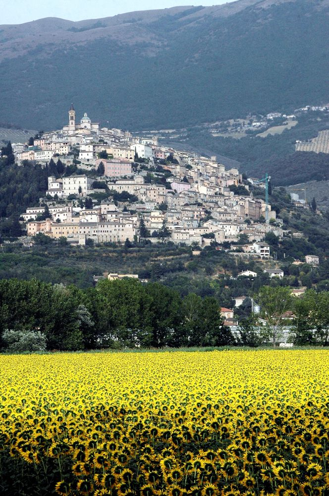 Hill top towns in Umbria and Tuscany are a sight to behold. make sure to visit one during your trip. For more information about Italy travel, visit our website at www.touritalynow.com.
