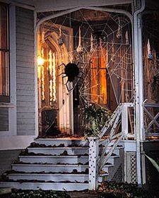 Outdoor Halloween decorations  giant spider web