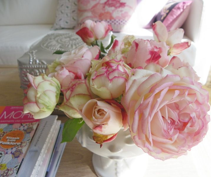 .: Antique Roses, Sweet Roses, Favorite Flowers, Pink Roses, Stuff, Beautiful Flowers, Morning, Flowers ゚ Roses ゚ Flowers, Photo