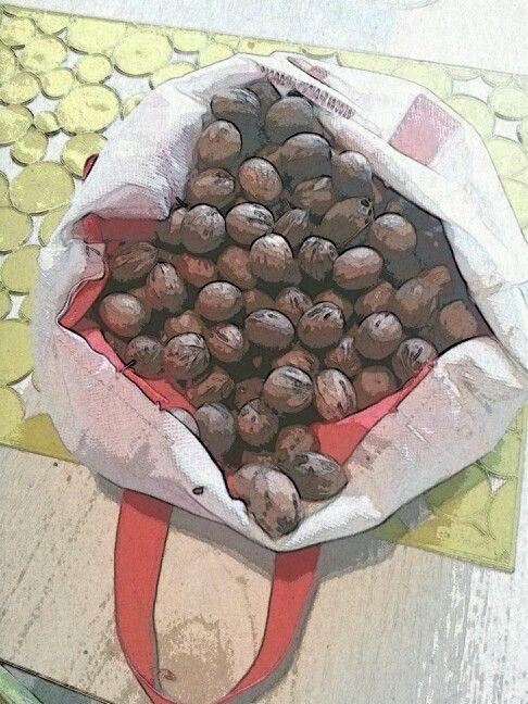 Aww nuts!