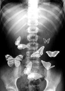 you give me butterflies..