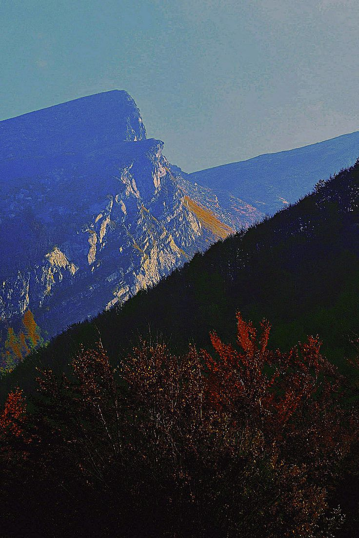 High Val Parma Forest  -  The Lagoni Sunset at Pianaccia Rock
