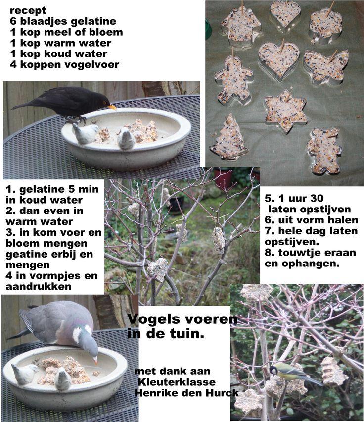 het maken van vetbollen maar dan zonder vet. een makkelijke en veilige manier om eten voor de vogels te maken.