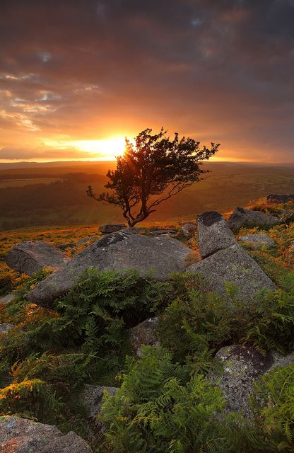 Sunset - Dartmoor makes our family happy. Spending long family walks searching for letterboxes.