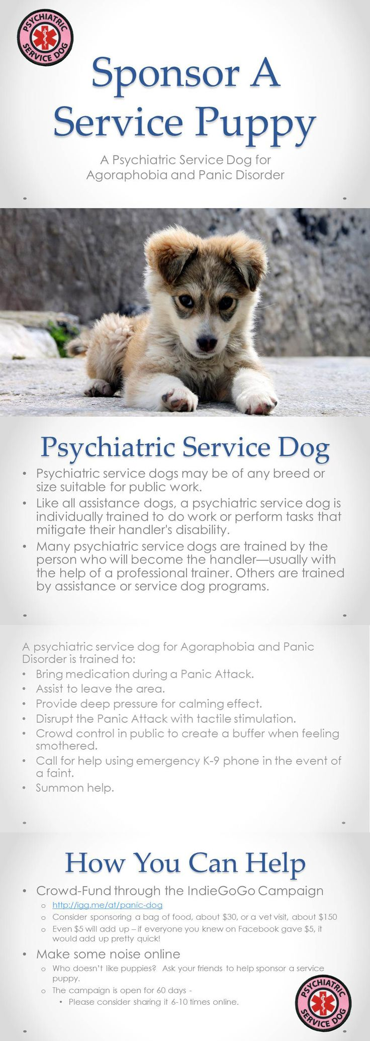 Psychiatric Service Dog Information on psychiatric service dogs and their tasks.  https://www.facebook.com/diyservicedog/ #servicedog