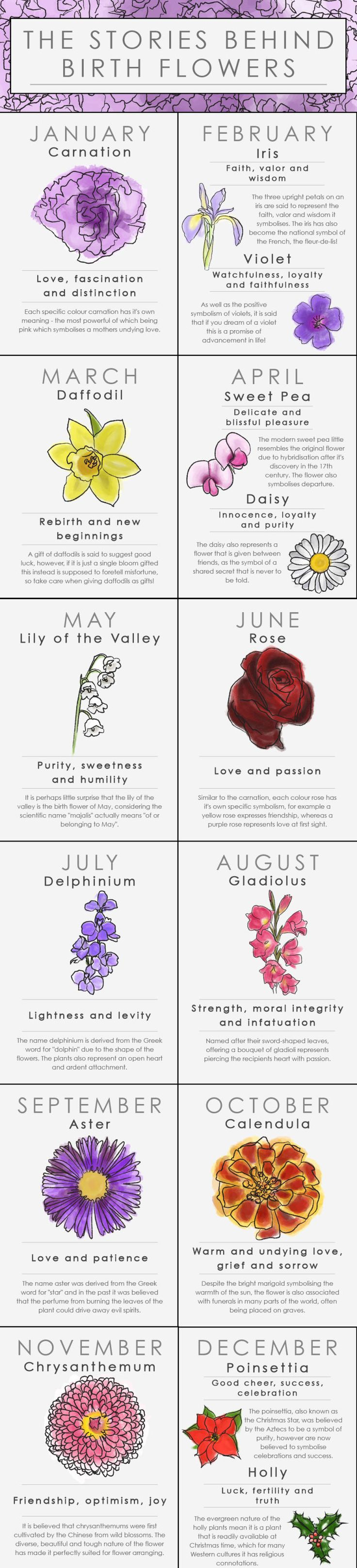Your birth flower is the bloom associated with the month you were born which holds a symbolic meaning – a floral Zodiac, if you will.