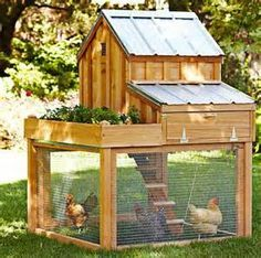 williams sonoma chicken coop plans - Bing Images