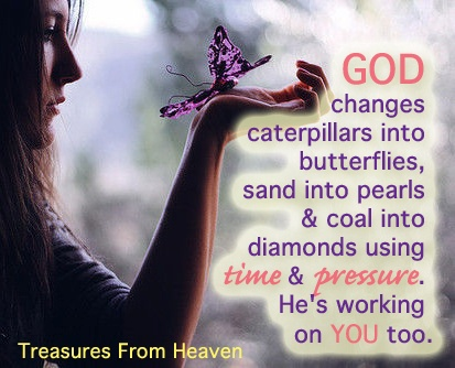 Image result for god changes caterpillars into butterflies